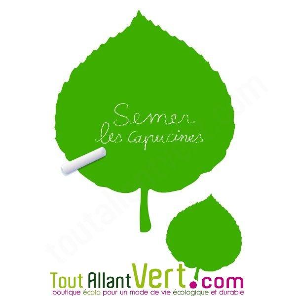 Sticker ardoise feuilles de noisetier mati re v g tale et - Feuille d ardoise ...