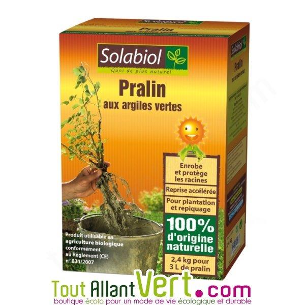 Pralin aux algues vertes pour une reprise acc l r e des for Acheter des plantes vertes