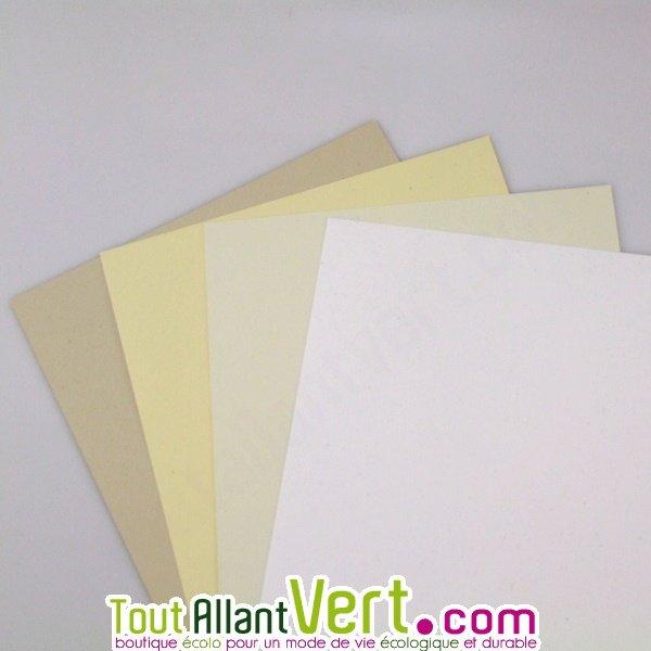 Préférence Papier recyclé pour carte de visite, 250g achat vente écologique  AH86