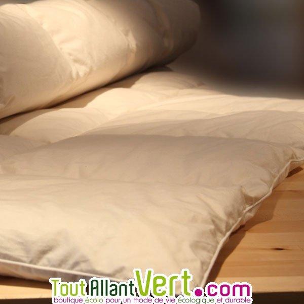 mille oreillers couette en duvet d oie sp cial t et coton biologique. Black Bedroom Furniture Sets. Home Design Ideas