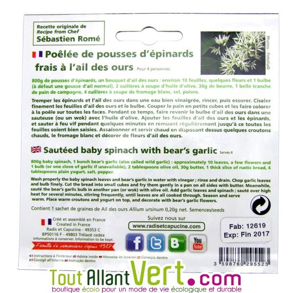 Graines ail des ours ou sauvage fleur comestible et - Ou trouver ail des ours ...