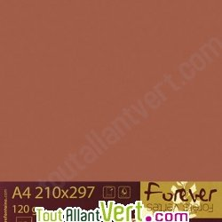 Papier couleur recycl�e A4 Forever Marron Tabac 160g